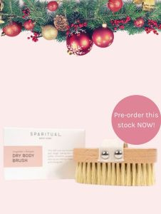 XMAS DEALS 2020-SR DRY BODY BRUSH